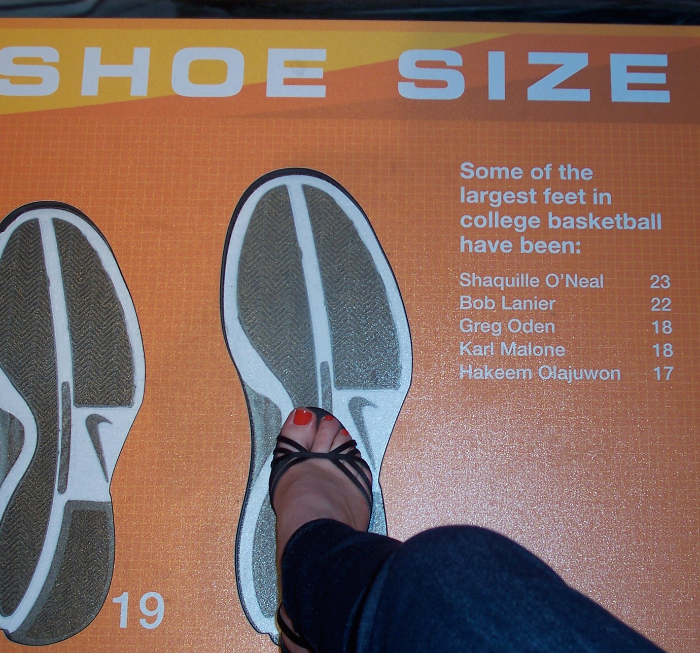 Size 23?? That would really suck the fun out of shoe shopping